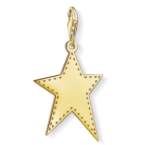 Generation Charm Club Goldener Stern Y0040-413-39